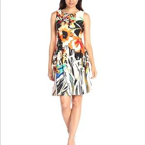 Gabby skye printed scuba dress plus