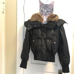Black puffy coat from Express