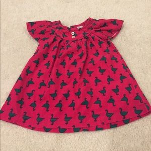 Magenta dress with green duck print - 3 months