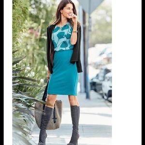 Cabi Sigourney Skirt ❣️ Size 4 ❣️ NWOT