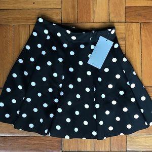 NWT Zara Polka Dot Skirt