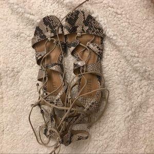 Schutz Erlina Gladiator Sandals in Snake