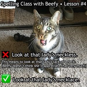 Dresses & Skirts - Spelling makes a difference!