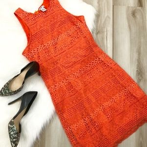 🌻Bar III Orange Coral Dress Large🌻