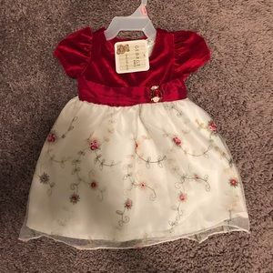 Precious baby girl holiday dress