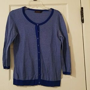 The Limited Striped Blue Sweater
