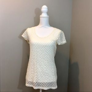 Banana Republic Stretch Lace Top with Camisole