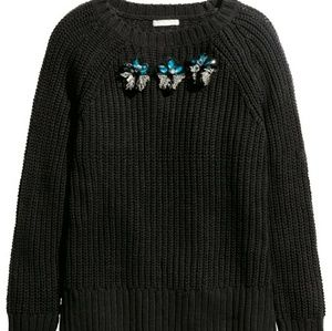 Large new sweater H&m