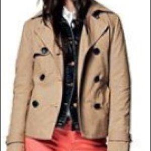 Gap Brown Jacket with interchangeable collar
