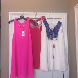 NWT Lot of Dresses Stitch Fix Skies are Blue