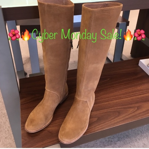 1794074e02d New Ugg Daley suede Chestnut Tall boots 🔥❤️🔥SALE NWT
