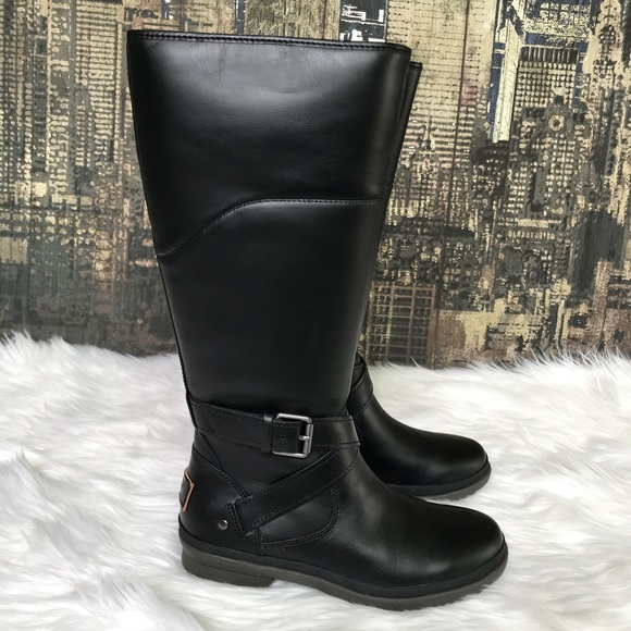 1ed882e8846 🎄✨🆕UGG Evanna Leather Riding Boots in Black✨👢🎄