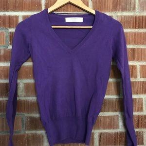 Zara Purple V-neck Sweater