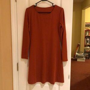 American Apparel long sleeve minidress