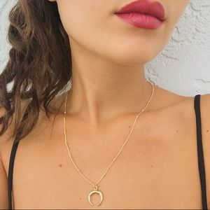 e4cb3fc57837 Jewelry - Mini Double Horn Necklace in Gold