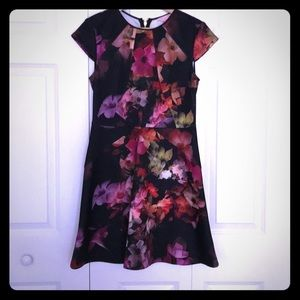 TED BAKER Beautiful Dress NEW without tags
