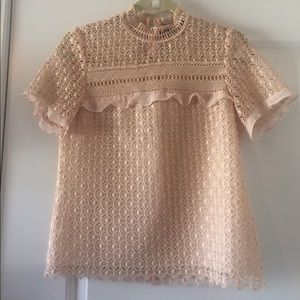 Zara Blush Pink Gorgeous Lace Ruffle Top