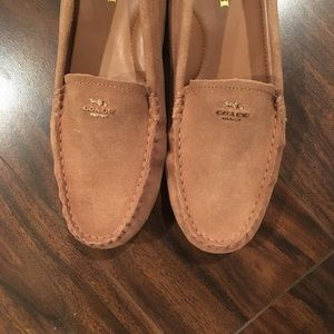 NEW coach Suede Loafer