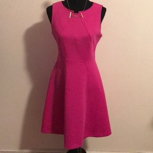 Hot pink fit and flare dress with gold details 8