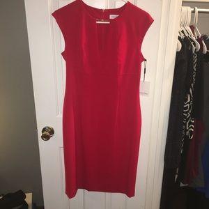 Calvin Klein Red Sheath Dress