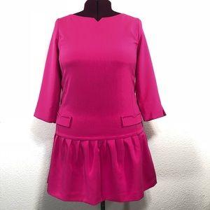 Victoria Beckham for Target Pink Lined Dress