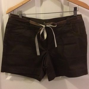 Ann Taylor Chocolate Brown Shorts