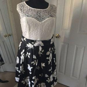 Mystic Black & White Floral Lace Fit & Flare Dress