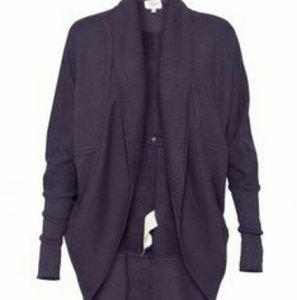 Aritzia/Wilfred Diderot Sweater