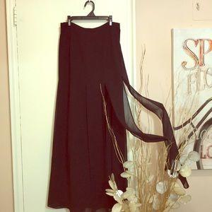 Sheer Crepe Skirt with Overlay of Sheer Panels