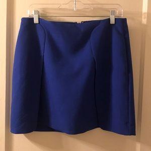 NWOT Banana Republic Skirt