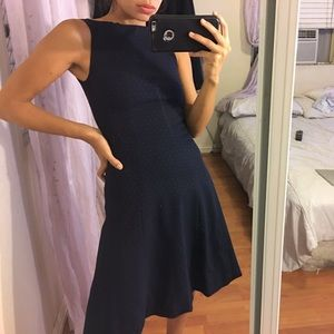 H&M Polka Dot Navy Blue Fit and Flare Dress