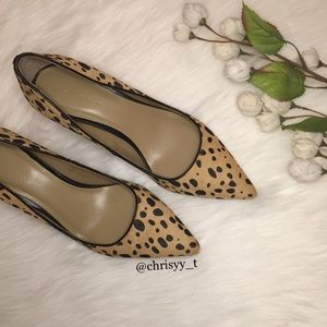 Ann Taylor animal print pointed toe pumps