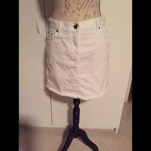 J CREW Skirt (28)