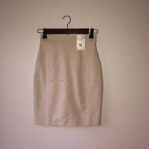 NWT! H&M nude pencil skirt size 2