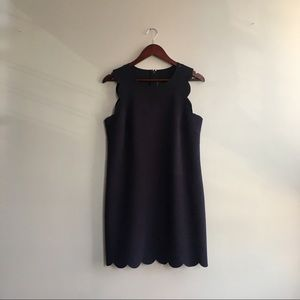 Scalloped Edge Navy Dress - JCREW- Size 8