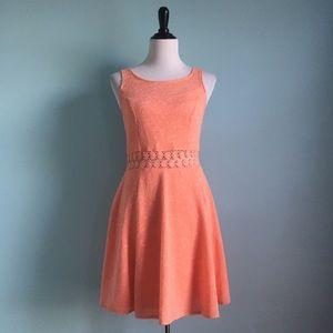 Peach Lacey Crochet Skater Dress