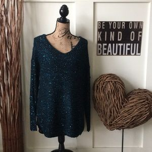 Apt. 9  sequined sweater w/sheer blouse underneath