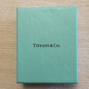 "Tiffany & Co. ""B"" initial bracelet"
