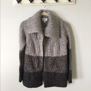 Ann Taylor LOFT Chunky Wool Sweater