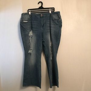 Cato Classic Distressed Plus Size 24WP Bootcut