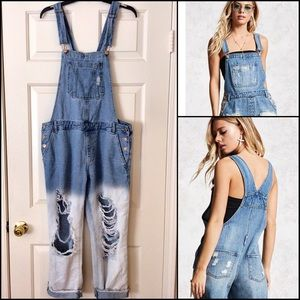 Destroyed Overalls
