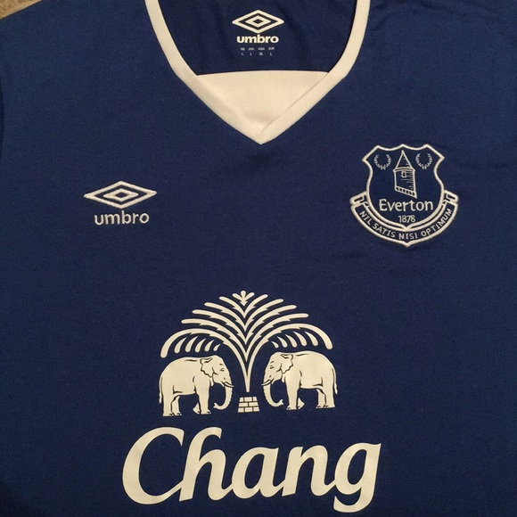 8569eb22655 Everton Football Club Home Jersey 2015 16 Soccer. M 5a1227402599fe01f40a75af