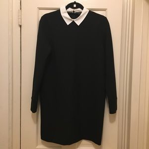 NEW Black Dress with White Collar