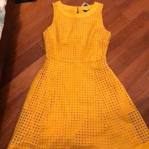 Mustard Tommy Hilfiger dress!