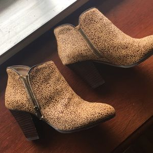 Sole society bootie, size 5.5
