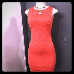 Papaya clothing dress in papaya color 😜