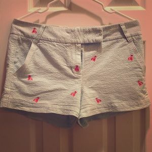 J. Crew City Fit Shorts with Red Lobster