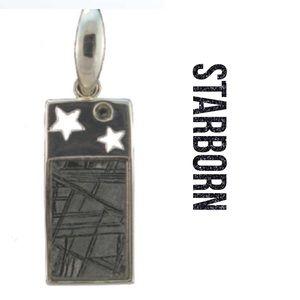 Starborn Creations Muonionalusta Meteorite Pendant