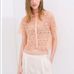Small Zara basic pink lace crop top