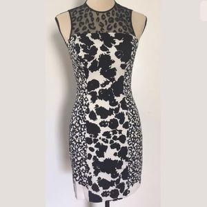 New French Connection Animal Print Dress Size 4